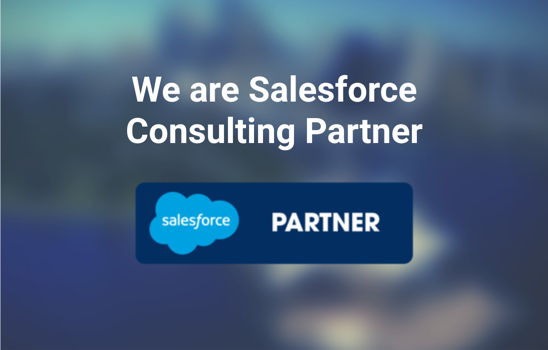 Principle Salesforce Consulting Partner